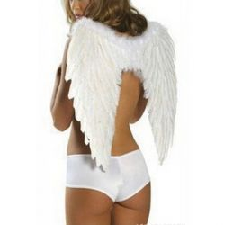 Feather Wings Rent
