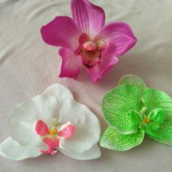 Hairpin-flower