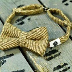 Exclusive butterfly - tie (beige)