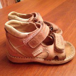 Sandal derisi