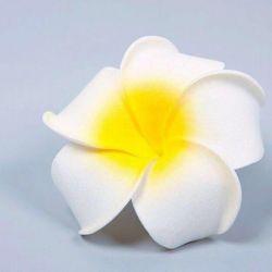 Clip-Flower!