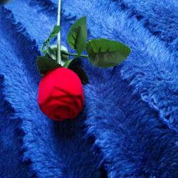 Cutie de trandafiri