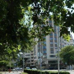 Apartament, 2 camere, 81,3 m²