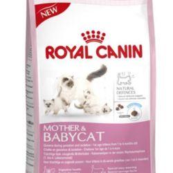 Royal Kanin Dry food for Ber.koshek and kittens. Different