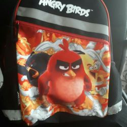 Backpack for the student