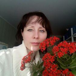 Καλάνχοε λουλούδι