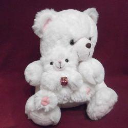 Yavru ayı ile yumuşak ayı