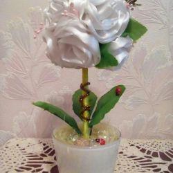 Topiary rose white
