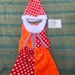 Hire gnome costume