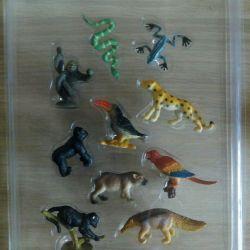 Educational book + figures of wild animals