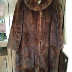 Fur Marmot