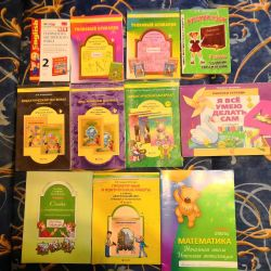 2-3-4 grade. Textbooks and notebooks