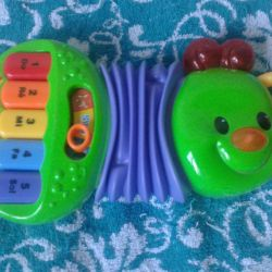 Musical caterpillar accordion