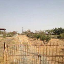 Сільськогосподарське поле в Агіос Афанасіос в Лімассолі