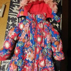 Jacket (Winter)