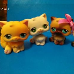 Pet shop cat lps