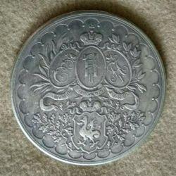Медаль 100 лет Казань гимназия