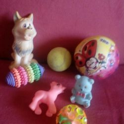 Toys for dogs package