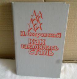 Kitap - Çelik Sertleştirilmiş Nasıl
