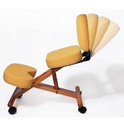 Knee Stool with Backrest Smartstool Brown