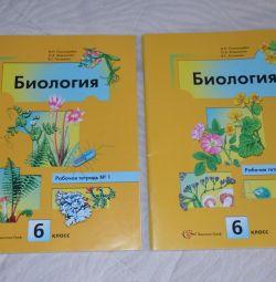 Workbooks on biology 6kl.