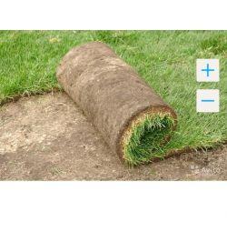 Rol de gazon, grădinărit