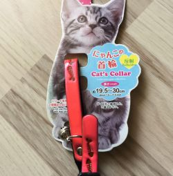 Collar for cat