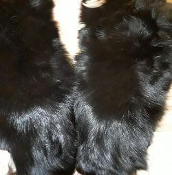 Fox κολάρο