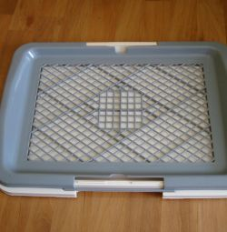 TRAY FOR A SMALL DOG