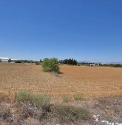 Commercial Field in Lakatameia, Nicosia
