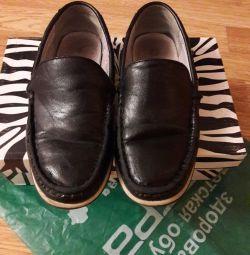 παπούτσια zebra p32