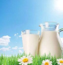Alpine Nubian goat milk