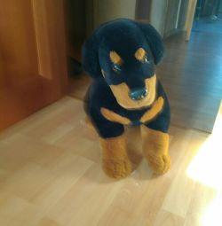Σκύλος, 70 εκ., Μοιάζει με ένα ζωντανό, σε καλή κατάσταση