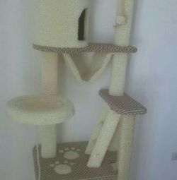 Kitten, a complex with a house for a cat