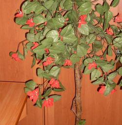 Λουλούδι δέντρο