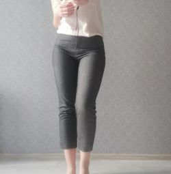 Pants-breeches gray