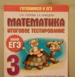 EGE in mathematics, in Russian