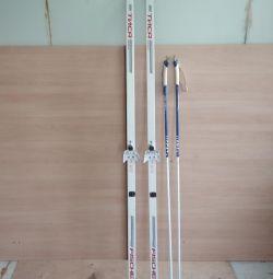 Tis schiuri cu Fischer Crown Sticks. schimb