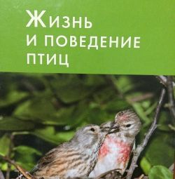 Life and behavior of birds