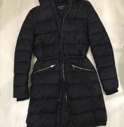 Coat Concept Club
