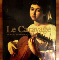 The book of Caravaggio