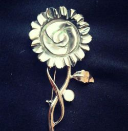 New brooch with mother-of-pearl