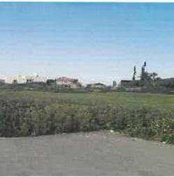 2 câmpuri adiacente din Aradippou, Larnaca