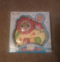 Musical toy new