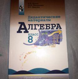 Didactic Materials on Algebra Grade 8