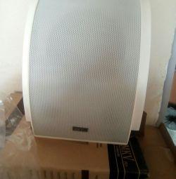 Speaker system broadcasting