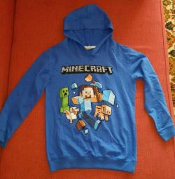 Minecraft sweatshirt, p.160
