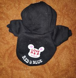 Clothes for dogs, puppy small.