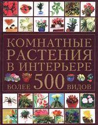 Indoor Plants Interior Over 500 plants