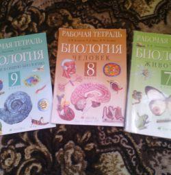 Βιβλία εργασίας